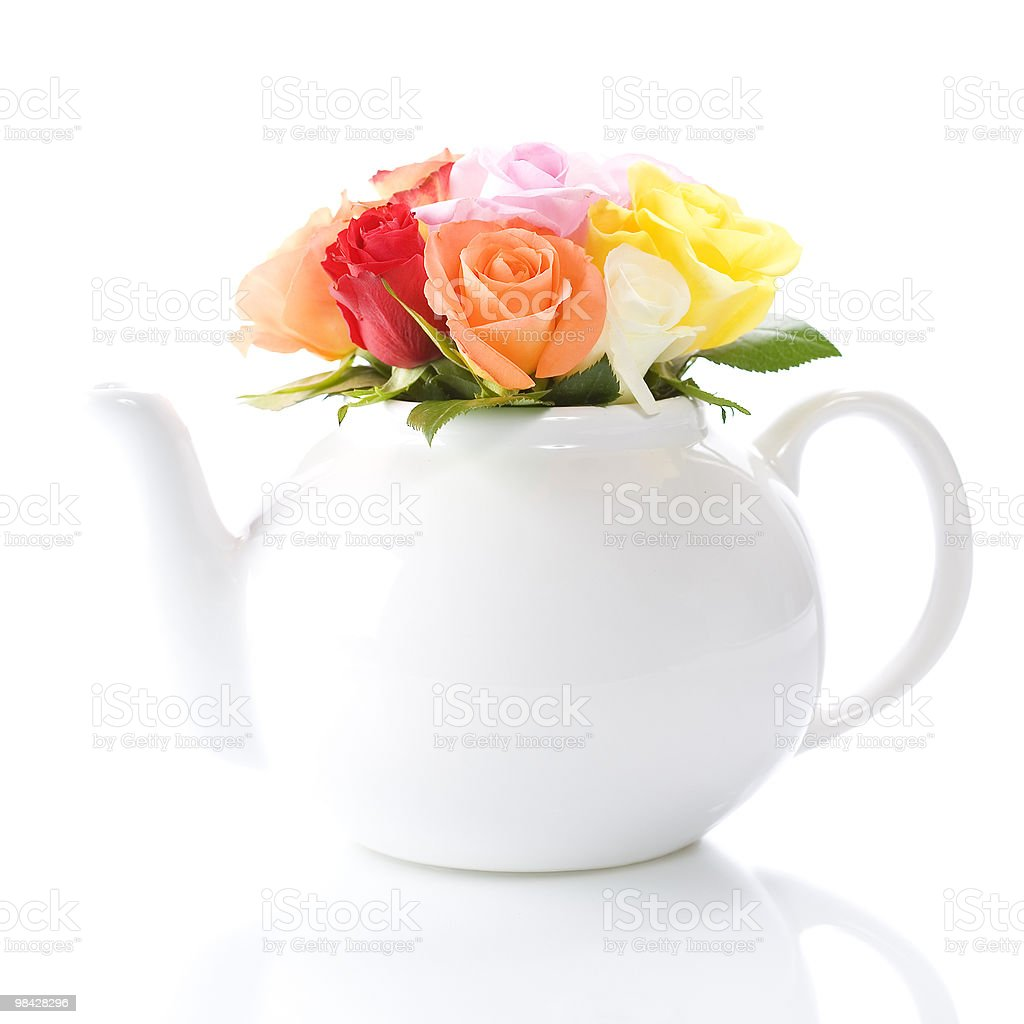 teapot with a fresh roses royalty-free stock photo