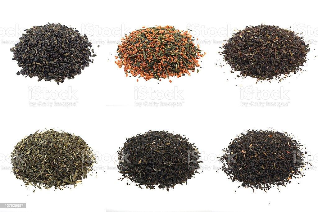 teas, shot im studio: gunpowder, genmaicha, darjeeling, sencha, white, jasmine royalty-free stock photo