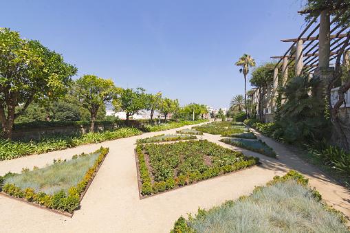 Teatre Grec garden, Barcelona