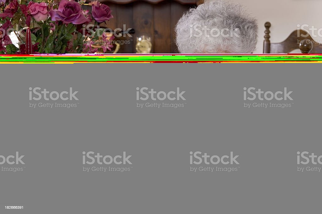Technical Support royalty-free stock photo