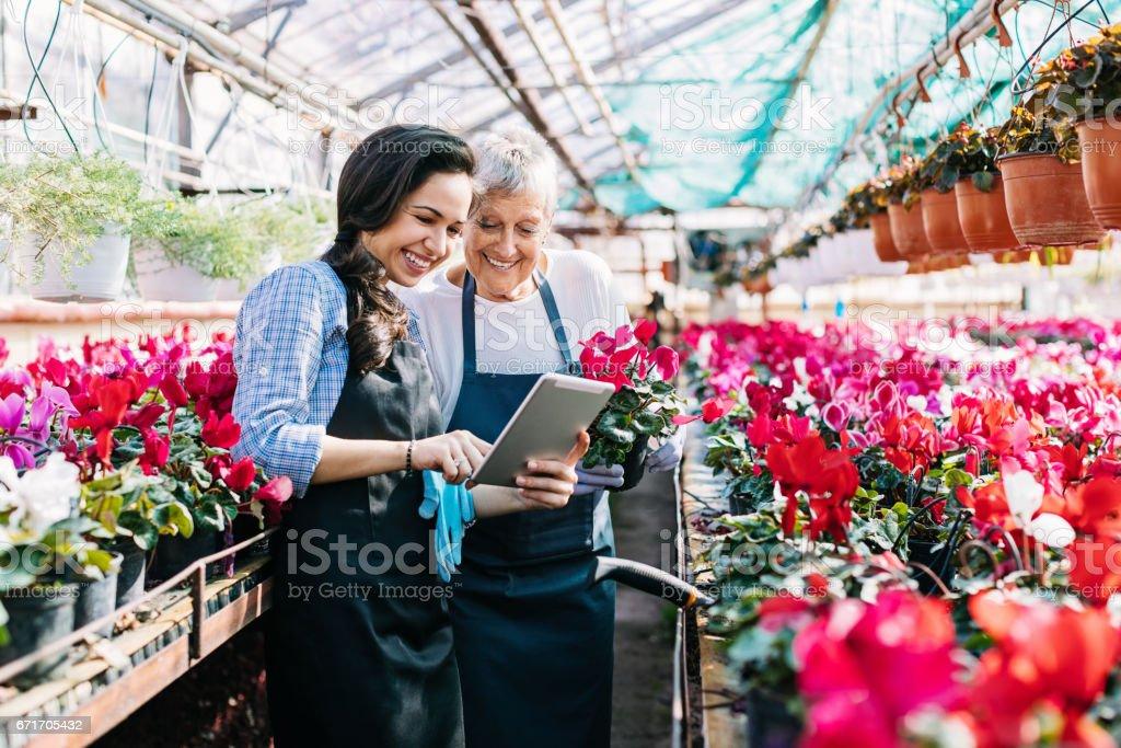 Tecnología y flores - foto de stock