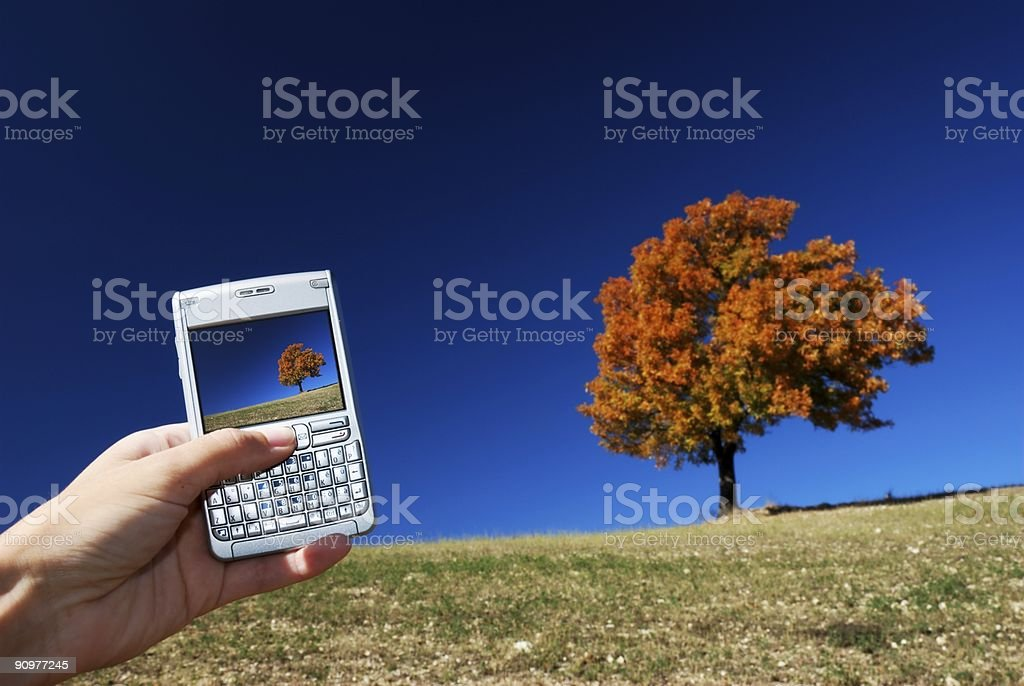 Technology and nature royalty-free stock photo