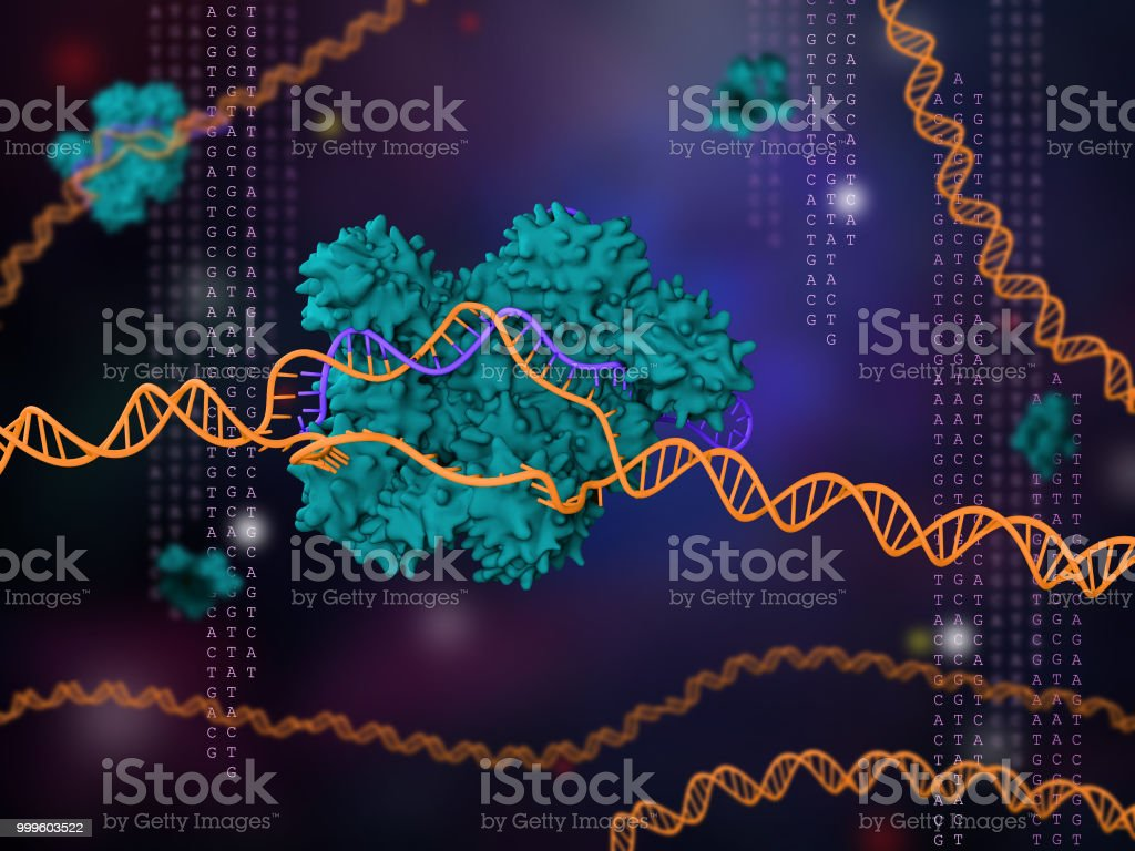 CRISPR technology stock photo