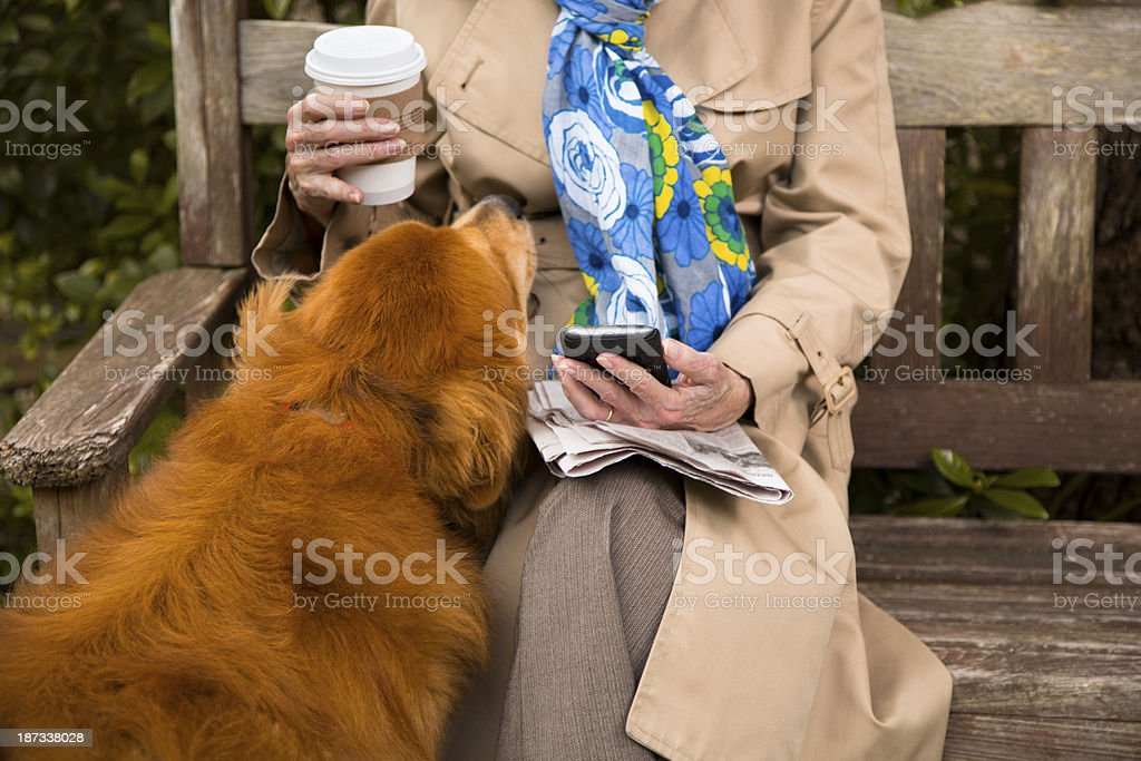 Technology:  Senior woman uses smart phone in park. Pet dog. royalty-free stock photo