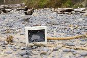 Monitor broken and left on beach