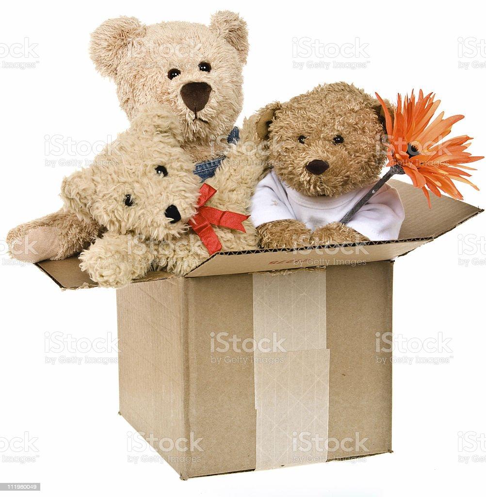Urso de pelúcia família em caixa com embalagem de flores foto royalty-free e599a523e51e1