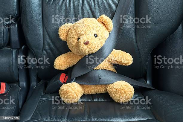 Teddy bear fastened in the back seat of a car picture id616247450?b=1&k=6&m=616247450&s=612x612&h=f1gstew0khpbgslx9a2ghf053 zmgcyh5tcgzfzr em=