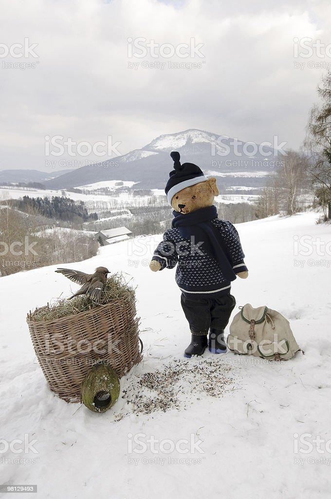 Teddy bear feeding bird royalty-free stock photo