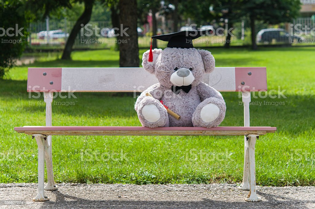 Teddy bear graduate bachelor's degree. stock photo