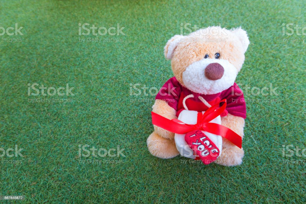 Teddy bear holding a gift box in green grass  background. stock photo