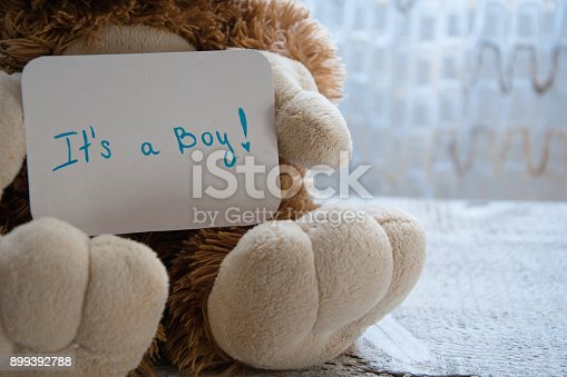 886700726istockphoto Teddy bear holds an announcement card for baby boy, space for text 899392788