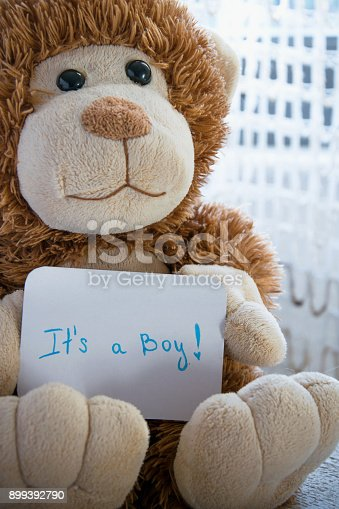 886700726istockphoto Teddy bear holds an announcement card for baby boy, space for text 899392790
