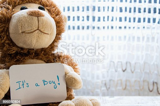 886700726istockphoto Teddy bear holds an announcement card for baby boy, space for text 899392804