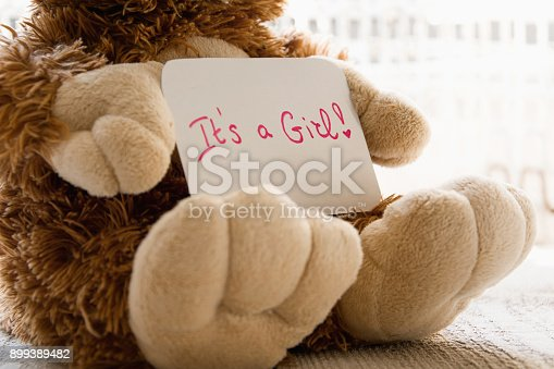 508167718 istock photo Teddy bear holds an announncement card for baby girl, space for text 899389482