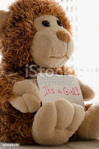 508167718 istock photo Teddy bear holds an announncement card for baby girl, space for text.  New arrival in the family 903588438