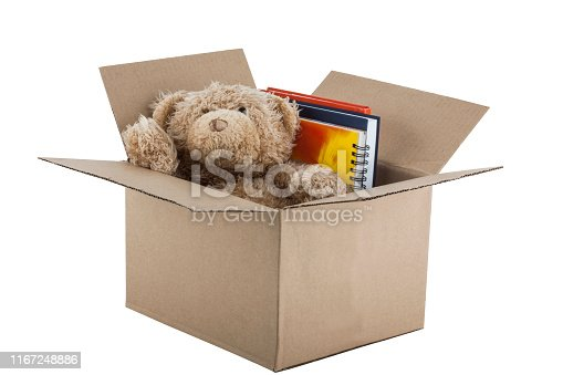 Teddy Bear in cardboard box isolated on white background