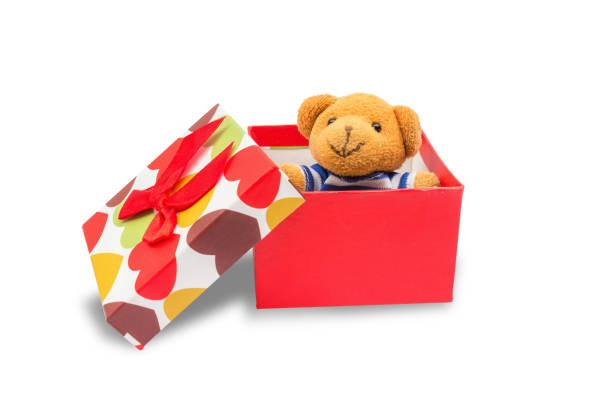 Teddy bear in gift box isolated on white background with clipping picture id683247490?b=1&k=6&m=683247490&s=612x612&w=0&h=rf8mkp0r2hknx4s vd8xmujcv7v zcmvxupu6vmaoru=