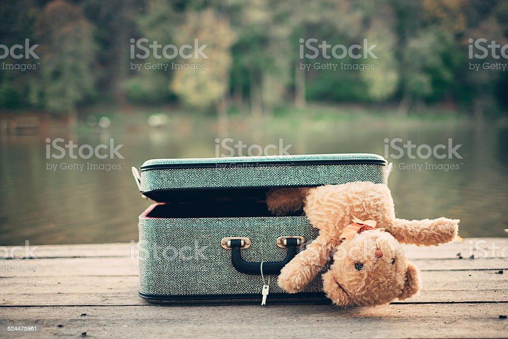 Teddy bear in old bag stock photo