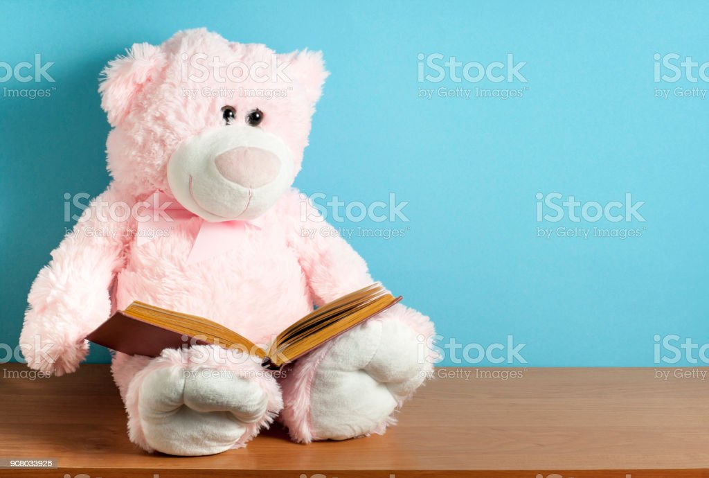 Pink teddy bear read book on blue background. Education or playing...
