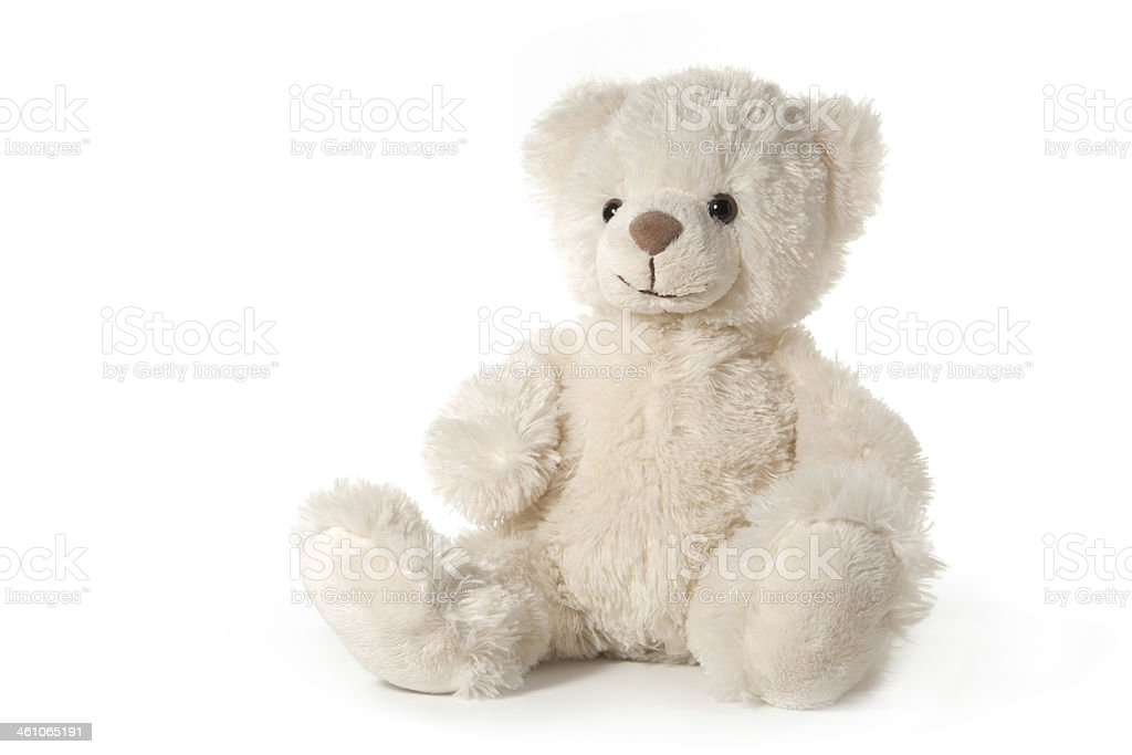 Teddy bear isolated on white stock photo