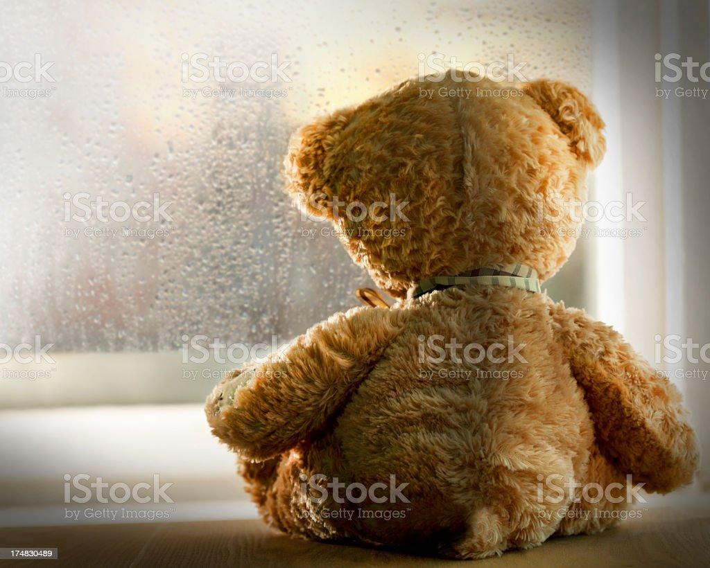 Teddy bear looking out rainy window stock photo