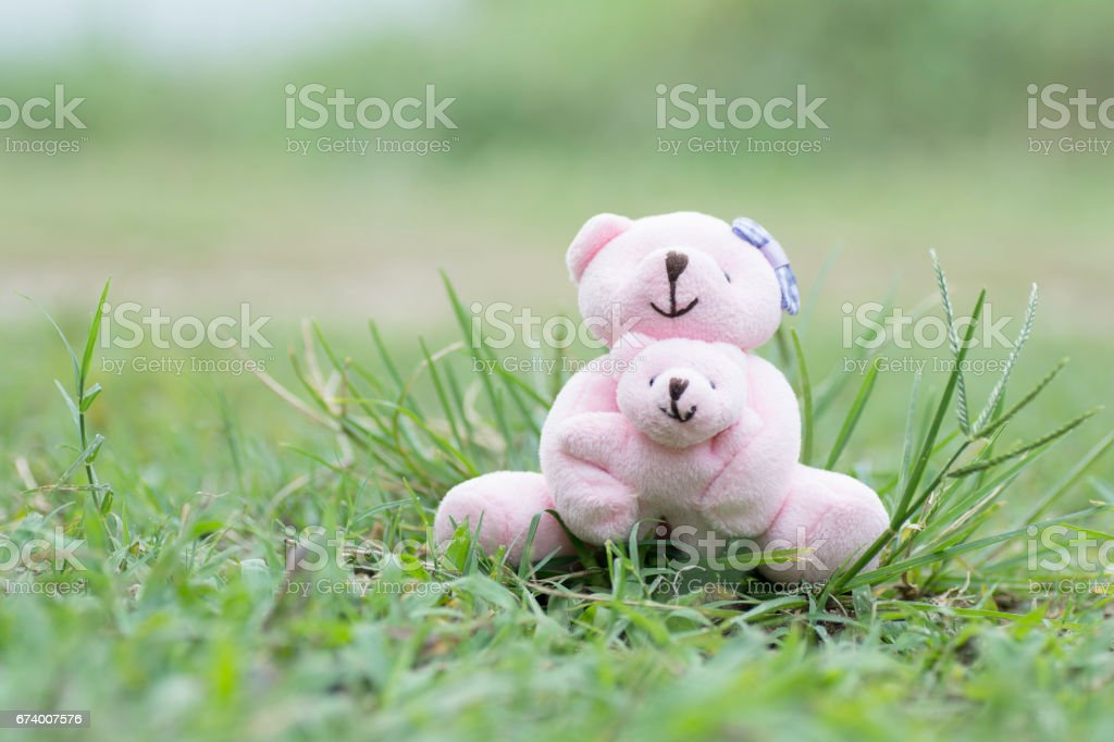 Teddy bear Mom and baby sitting on the grass royalty-free stock photo