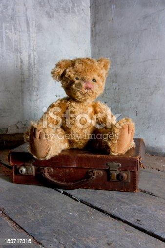 istock teddy bear on suitcase 153717315