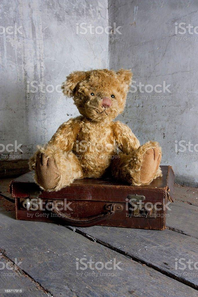 teddy bear on suitcase stock photo