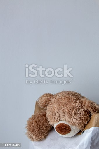 Teddy bear on white background with copy space. love and children concept