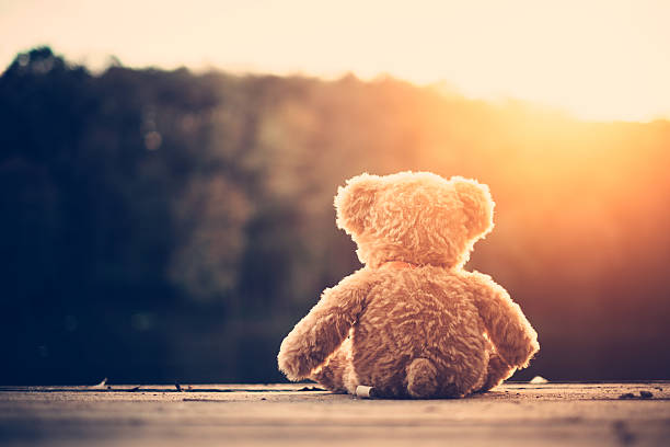 Image result for teddy alone images