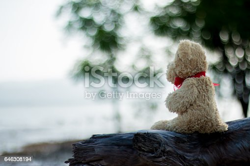 Teddy bear on the Timber  in the morning .