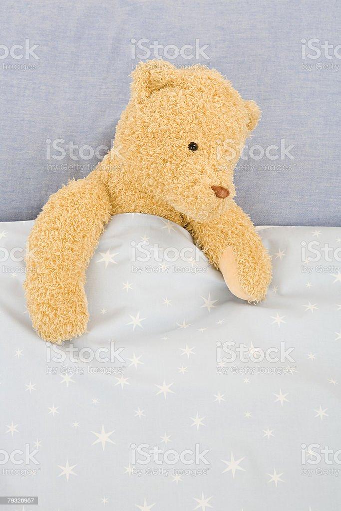A teddy bear royalty-free 스톡 사진