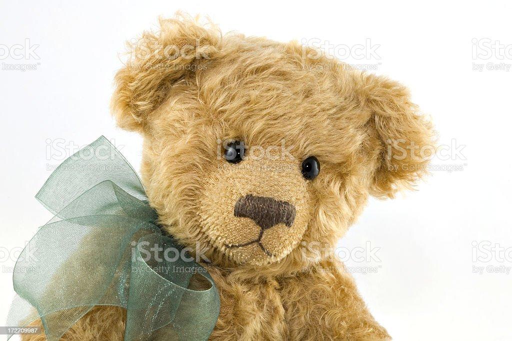 Teddy Bear Portrait royalty-free stock photo