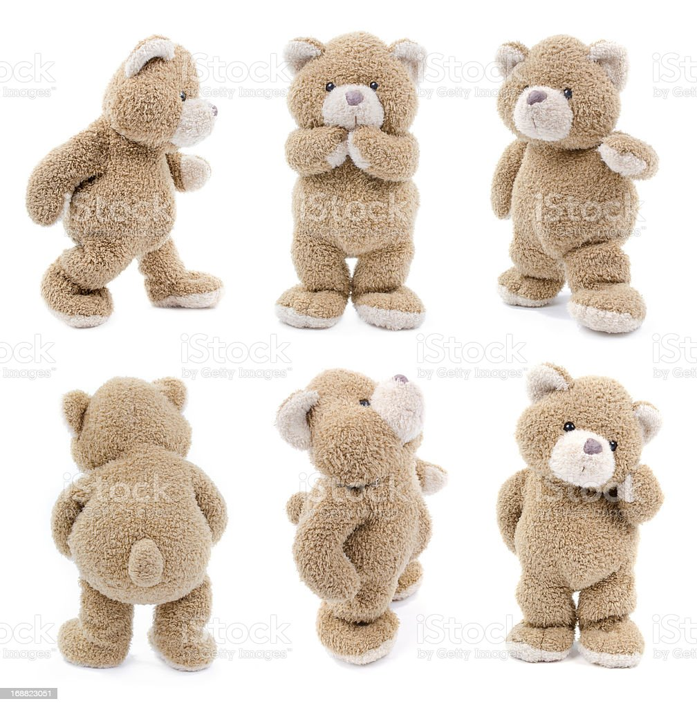 teddy bear set stock photo