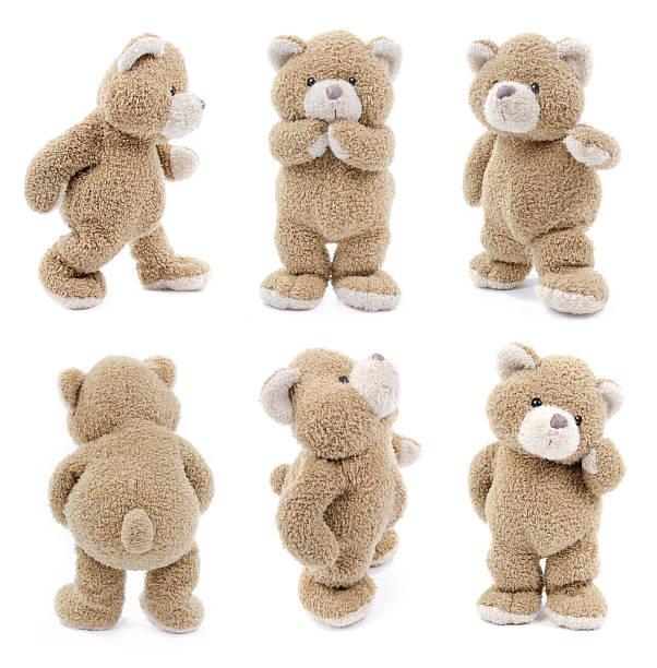 Teddybär – Foto