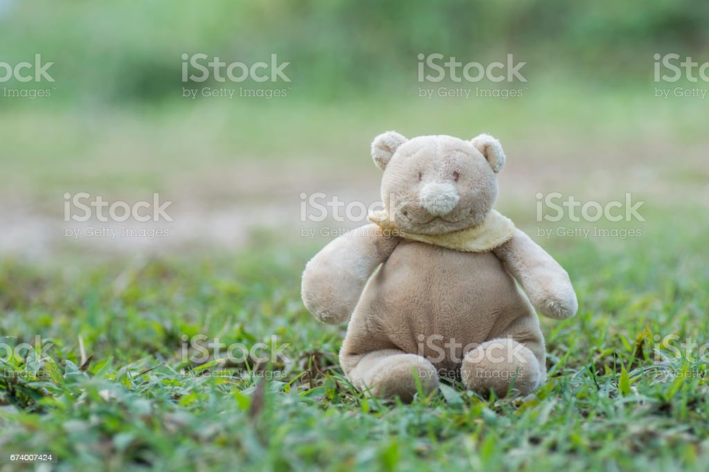 Teddy bear sit on the grass royalty-free stock photo