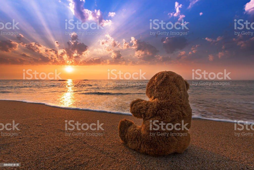 Teddy Bear toy alone on beach. - foto de acervo