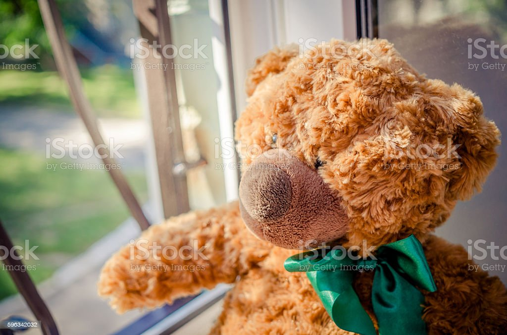 Teddy bear waiting for the master royalty-free stock photo