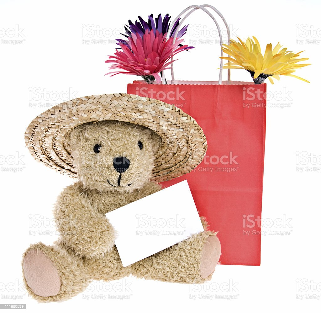 Teddy Bear with Blank Note Card Goes Shopping royalty-free stock photo