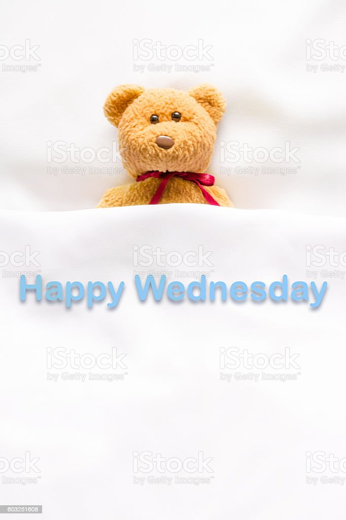 Teddy Bear with message ' Happy Wednesday' stock photo