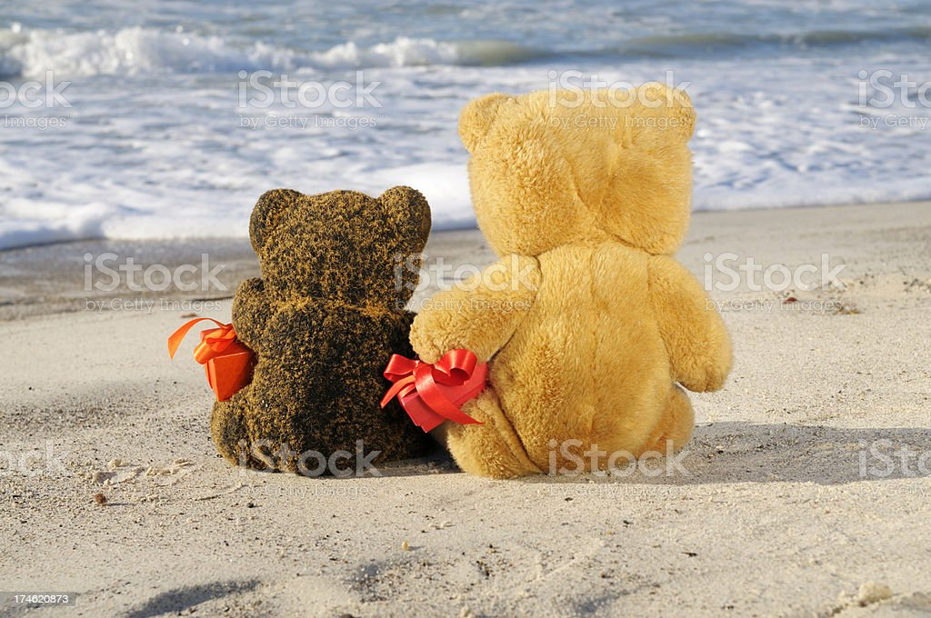 Teddy Bears in Love Holding Gifts by the Sea royalty-free stock photo