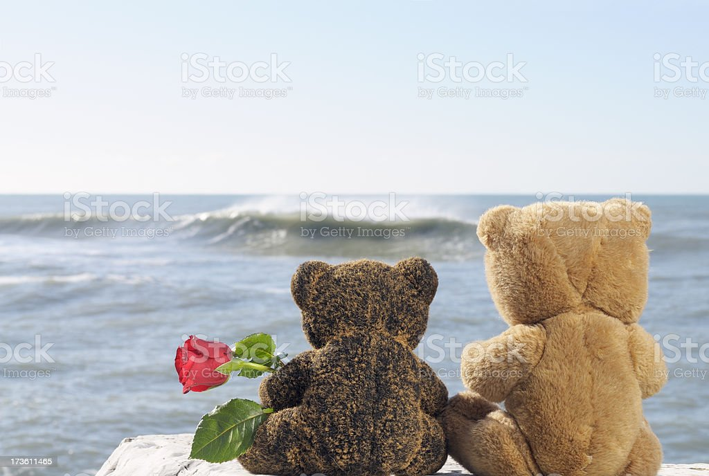 Teddy Bears in Love Holding Rose by the Sea royalty-free stock photo