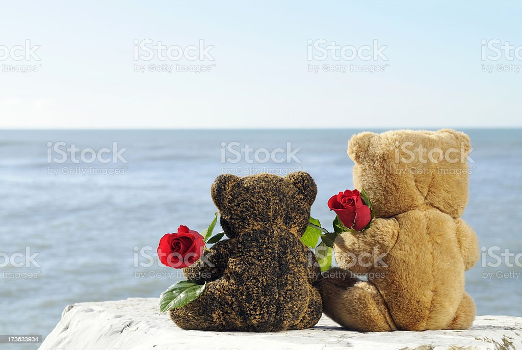 Teddy Bears in Love Holding Roses by the Sea royalty-free stock photo