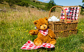 Teddy Bear's picnic.  One cute brown bear wearing a red and white neckerchief.  Sat in an English meadow in Summertime.  Traditional wicker basket with white china tea-set.  Horizontal. Space for copy.