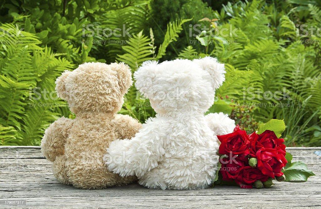 Ursos de pelúcia - foto de acervo