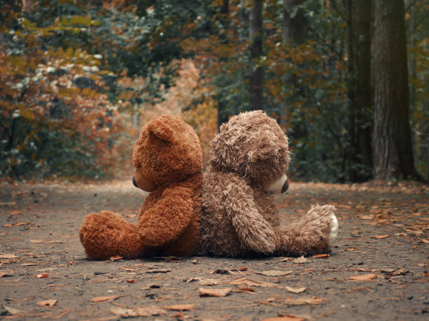 Teddy bears sit with their backs to each other. Autumn forest path. The concept of resentment, misunderstandings and conflict in relationships stock photo