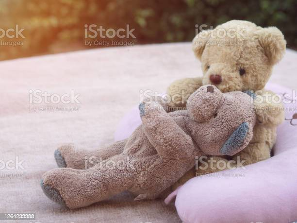 Teddy lover valentine and wedding concept picture id1264233388?b=1&k=6&m=1264233388&s=612x612&h=khnld6m9l3dbmkgnpdqynlxyd1pmcbpw fdeudf1wba=