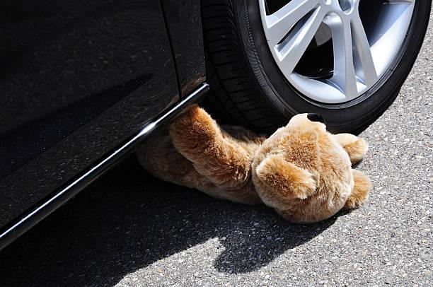 Teddy - foto de acervo