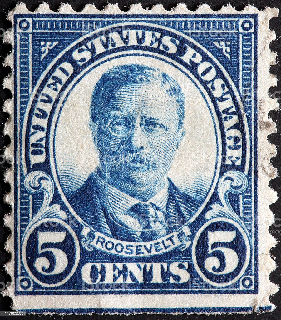 Teddy Roosevelt royalty-free stock photo