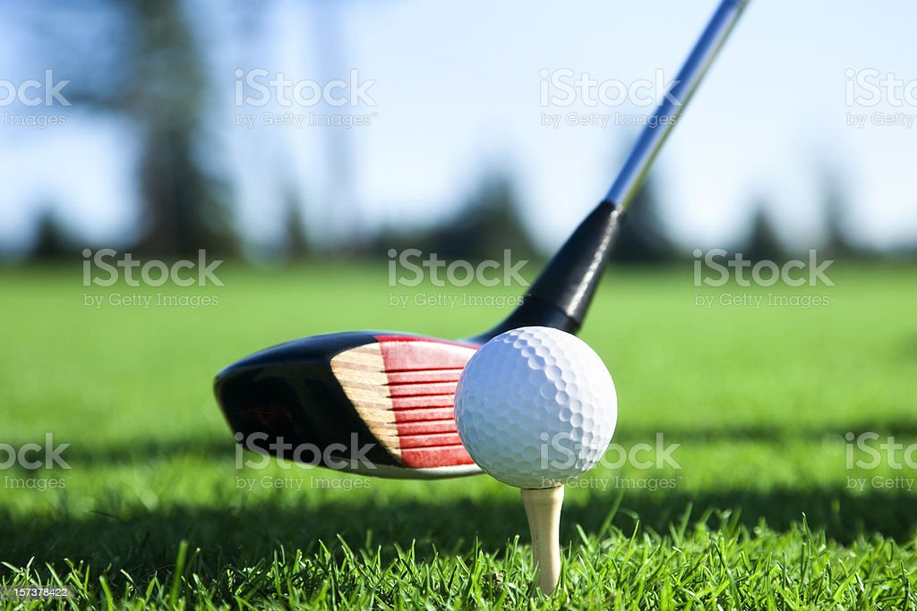 Teed and Ready to Swing royalty-free stock photo